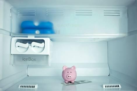 Eine Kühlschrankinnenansicht mit einem Sparschwein.