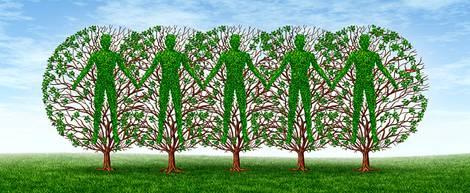 Zeichnung mit vier Bäumen darin gewachsenen Menschen