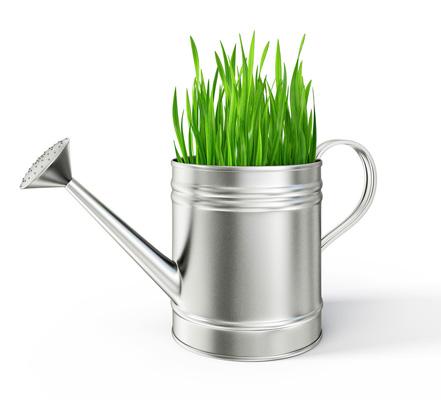 Gießkanne, aus der Gras wächst
